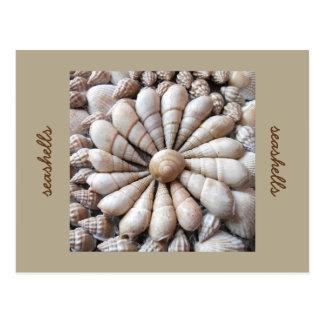 Carte postale artistique de cercle de coquillage