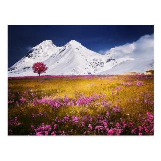 Carte postale d'Alpes de Milou