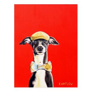 Carte postale de chien de lévrier italien - Harry