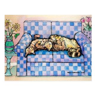 Carte postale de deux chats tigrés de sommeil