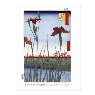 Carte postale de jardin d'iris