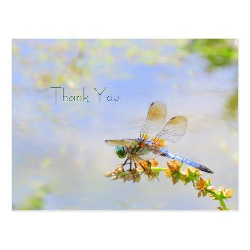 Carte postale en pastel de Merci de libellule