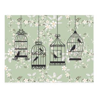 Carte Postale Floral vert doux avec des cages à oiseaux