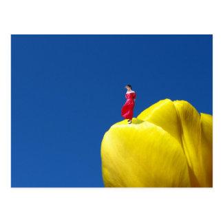 Carte Postale Tulipe