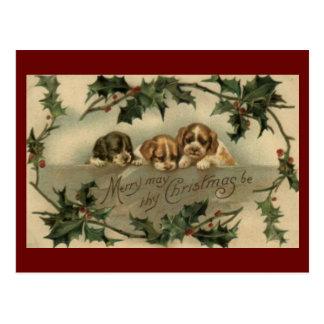 Carte postale vintage de Noël de trio de chiot