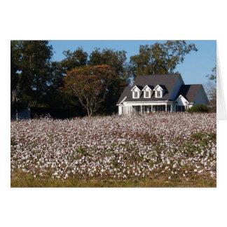Carte vierge avec le champ de maison et de coton