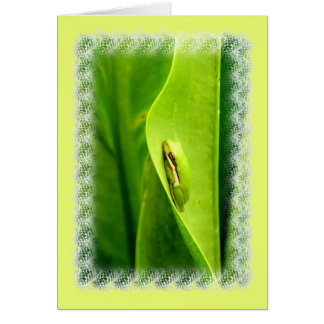 Carte vierge de note, grenouille d'arbre verte