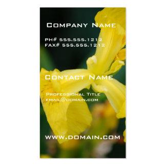 Cartes de visite de fleur d'iris jaune carte de visite
