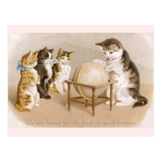 Cartographer Cat and Three Kittens Postcard