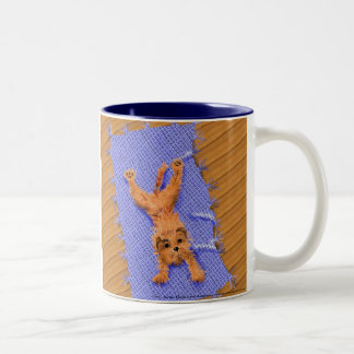 Cartoon Border Terrier Mug
