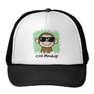 Cartoon Clip Art Cool Monkey with Sunglasses Trucker Hat