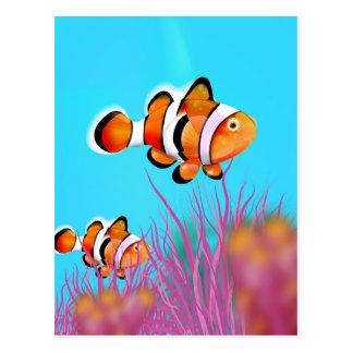 Cartoon clown fish postcard
