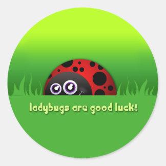 Cartoon Ladybug 'Ladybugs are Good Luck!' Stickers