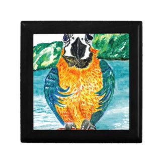 Cartoon Parrot Art2 Gift Box