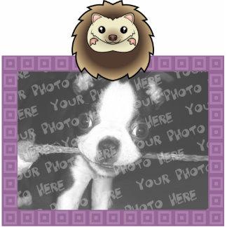 Cartoon Pygmy Hedgehog Acrylic Cut Outs