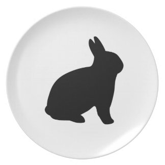 cartoon rabbit plate