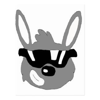 Cartoon Rabbit With Sunglasses Postcard