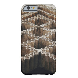 Carved in Stone Barely There iPhone 6 Case