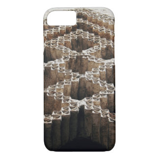 Carved in Stone iPhone 7 Case