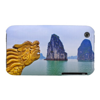Carving of Dragon, on bow of boat, with iPhone 3 Cases