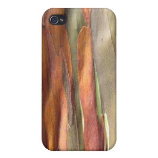 Cas de téléphone d'eucalyptus d'arc-en-ciel coque iPhone 4/4S