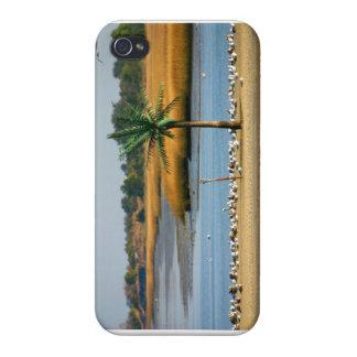 Cas de téléphone d'île de paume étui iPhone 4