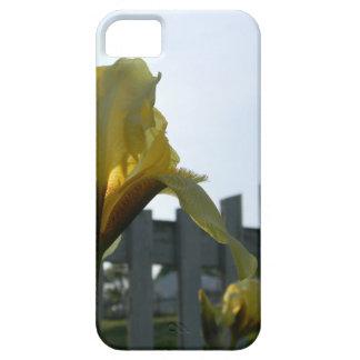 Cas de téléphone d'iris jaune coque iPhone 5 Case-Mate