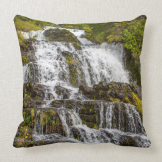 Cascada del Toro Throw Pillow