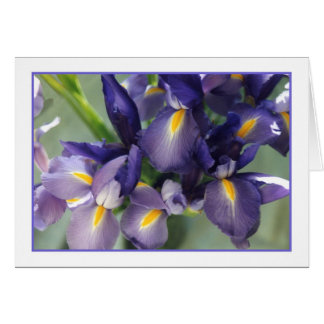 Cascade Iris Photo Greeting Card