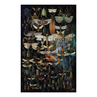 cascade of insects and butterflies poster