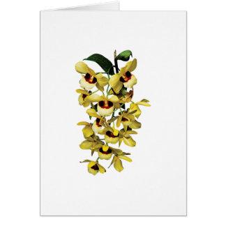 Cascade Yellow Orchids Card