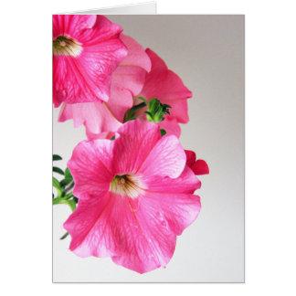 Cascading Pink Petunias Card