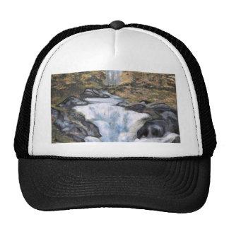 Cascata - óleo  (vendido) trucker hat