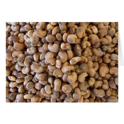 Cashew nuts greeting card
