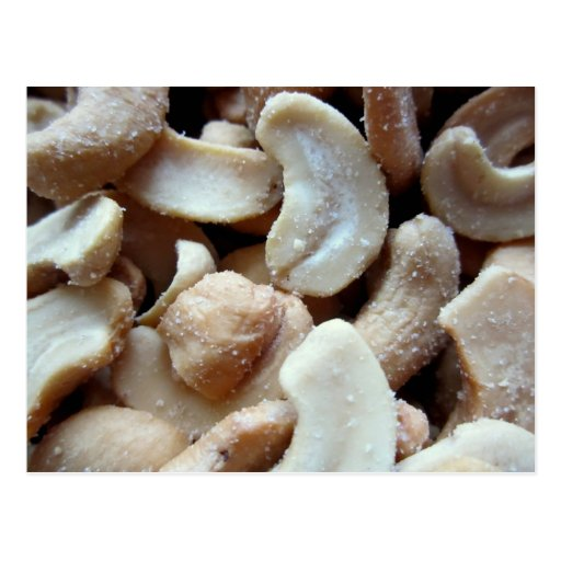 Cashew nuts post card