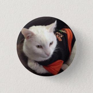 Casper the white cat just chilling 1 inch round button