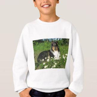 CasperDaisy20June2010 Sweatshirt
