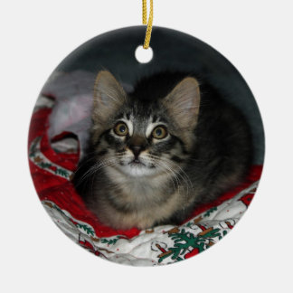 Caspian Kitty Christmas Ornament
