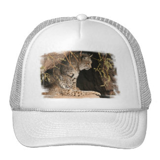Casquette de baseball de photos de chat sauvage