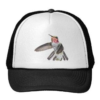 Casquette du colibri d'Anna masculine