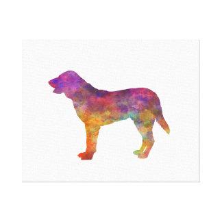 Castro Laboreiro Dog in watercolor Canvas Print