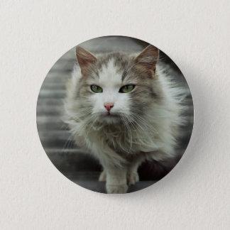 cat 2 inch round button