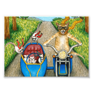 Cat 384 funny cat & mice on motorcycle photograph