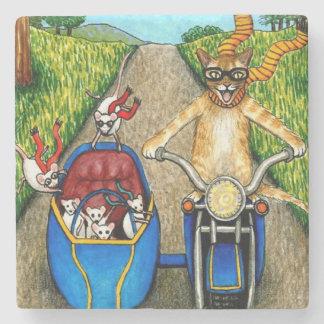 Cat 384 stone coaster