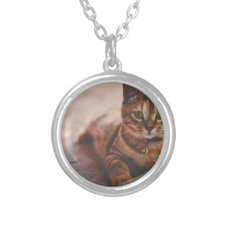 Cat-5 Silver Plated Necklace