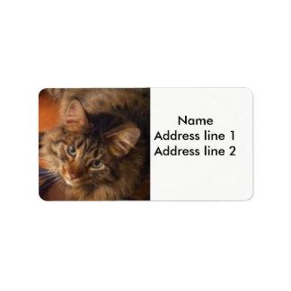 Cat address labels
