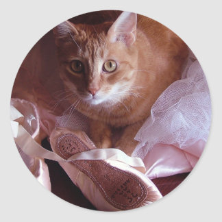 Cat and Ballet Slippers Sticker