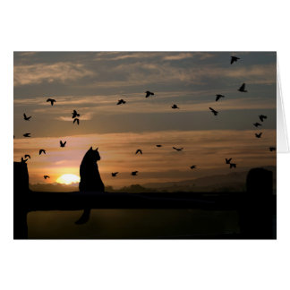 Cat and Birds Thank You Card