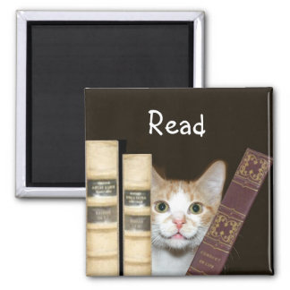 Cat and books square magnet