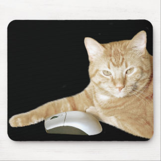 Cat and computer mouse mouse pad